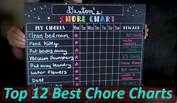 Best Chore Charts