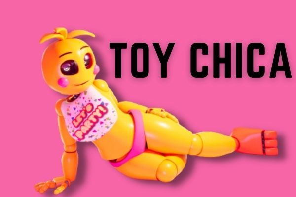 What does Toy Chica Look Like